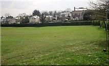 SX9065 : Houses on Cricketfield Road, Torquay by Derek Harper