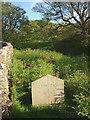 SD7067 : Jubilee boundary stone, Bloe Beck Bridge by Karl and Ali