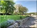 SK1483 : The Burial Ground, Hollowford Lane, Castleton by David Dixon