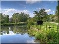SJ5396 : Sankey Canal at Stanley Bank by David Dixon