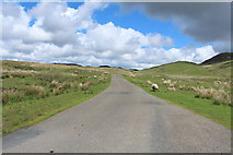 NX6060 : Road to Laurieston near Fell of Laghead by Billy McCrorie