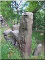 SE0229 : Gatepost with shuttling holes by John Illingworth