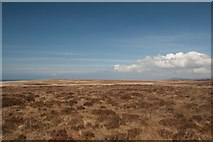 NR2469 : Expanse of moorland near Sanaigmore, Islay by Becky Williamson
