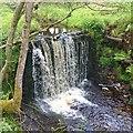NU0404 : Cartington Waterfall by Alan Pollock