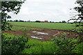 SK7959 : Potato field near North Muskham by Bill Boaden