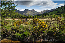 NM8363 : A walker beside the Strontian River by Hugh Close