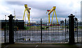 J3575 : Cranes and gates, Belfast by Rossographer