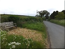 SX6195 : Seat at Gypsy Corner Cross by David Smith