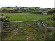 SX6195 : The Devonshire Heartland Way west of Corscombe by David Smith