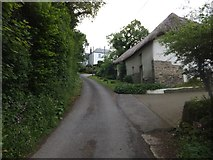 SX6296 : Barn conversion at Middle Corscombe by David Smith
