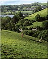 SX9071 : Towards the Teign estuary by Derek Harper