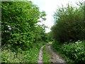 SU0152 : Russell Mill & Strawberry Hill Walk [61] by Christine Johnstone