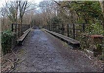 SO0103 : Footpath across a former railway bridge, Abernant, Aberdare by Jaggery