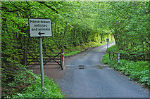 SS8521 : North Devon : Country Lane by Lewis Clarke