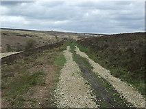 SK2775 : Track over Big Moor by JThomas