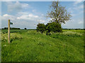 TM0772 : Green Lane Bridleway to Mellis Road by Adrian Cable