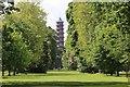 TQ1876 : Pagoda, Kew Gardens, London by Bob Embleton