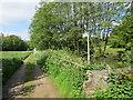 NZ1031 : Footpath heading west from Bedburn beside Bedburn Beck by Peter Wood