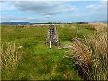 NS5876 : Craigmaddie Muir [8] Old Trigpoint by Robert Murray