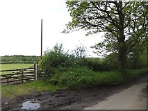 SX6599 : Gateway and field sloping towards the River Taw by David Smith
