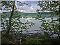 NY3701 : Windermere from the Shore Path at Wray Castle by David Dixon