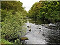 NY3603 : River Brathay at Clappersgate by David Dixon