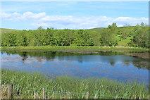 NX6592 : Blackmark Loch by Billy McCrorie