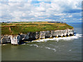 TA2372 : Flamborough Cliffs Nature Reserve by Scott Robinson