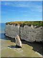 TA2471 : Queen Rock Sea Stack, Breil Nook, Flamborough by Scott Robinson