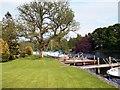 SD3786 : River Leven, Quay at Newby Bridge by David Dixon