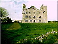 R2393 : County Clare - R480 - The Burren - Leamaneagh Castle by Suzanne Mischyshyn