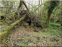 NS4077 : Lime-kiln ruin near Murroch Farm by Lairich Rig