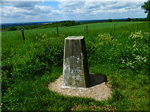 SU6022 : View from the trig point on Beacon Hill by Shazz