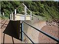 SX9267 : Railings and seawall, Watcombe Beach by Derek Harper
