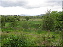 G9728 : Ross Townland by Kenneth  Allen