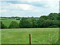 SP9900 : View north-east from Codmore Wood Road by Robin Webster