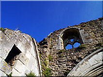 SE7365 : Kirkham Abbey - Where's the Roof Gone? by Andy Beecroft