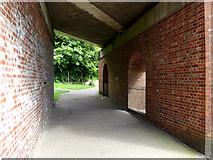 TM3877 : Path under Quay Street Railway Bridge by Adrian Cable