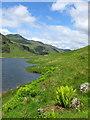 NN2207 : Loch Restil by sylvia duckworth
