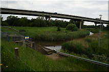 NZ4719 : Portrack Outfall next to the River Tees by Ian S