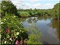 ST3894 : View upriver, Newbridge on Usk by Robin Drayton