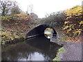SS7397 : Unusual tunnel-like bridge, Tennant Canal, Neath Abbey by Jaggery