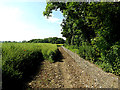 TM3780 : Field edge near Spexhall House & footpath by Adrian Cable