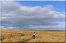 SD9834 : Dick delf hill. by steven ruffles