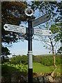 NT6172 : East Lothian County Council Fingerposts : Oak Corner, Yarrow by Richard West