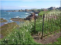 NT6779 : Coastal East Lothian : Close To The Edge by Richard West