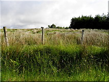 G9428 : Greaghlaglogh Townland by Kenneth  Allen