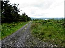G9229 : Rough road at Altavara by Kenneth  Allen