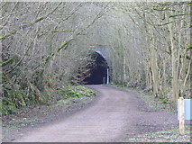 SK1273 : Eastern portal of Chee Tor Tunnel by John Winder