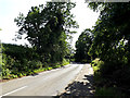 TM4077 : B1124 Beccles Road, Holton by Geographer